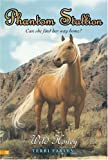 Wild Honey (Phantom Stallion #22) (0060815396) by Farley, Terri