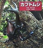 カブトムシ (ドキドキ!生きもの発見 1)
