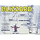 Blizzard educational poster chart