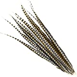 5 Pcs Lady Amherst Pheasant Tails 30