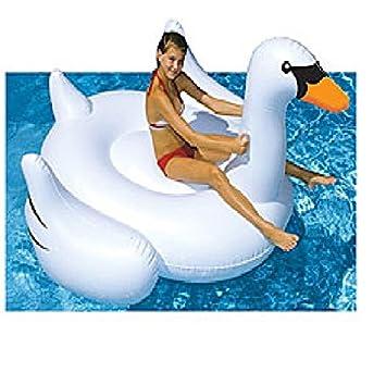 Swan Float Amazon Giant Swan Inflatable Pool