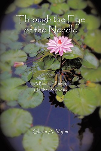 Through the Eye of the Needle: A Book of Poetry