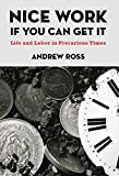 Nice Work If You Can Get It: Life and Labor in Precarious Times (Nyu Series in Social and Cultural Analysis)