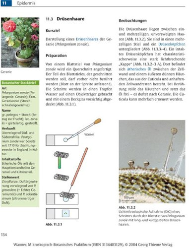 Mikroskopisch-Botanisches Praktikum für Anfänger