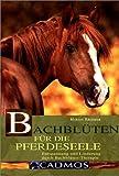 Bachblüten für die Pferdeseele: Entspannung und Linderung durch Bachblüten-Therapie - Marion Brehmer
