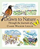 img - for Drawn to Nature: Through the Journals of Clare Walker Leslie book / textbook / text book