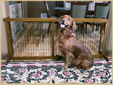 Carlson Pet Products Premium Hardwood Freestanding & Pressure Mount Extra Wide Pet Gate - Black - 28 inch x 40-70 inch (Free Standing Extra Wide Gate compare prices)