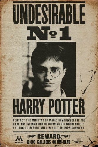 Harry Potter - Undesirable No 1 24X36 Poster Movie Art Print Wanted front-204400