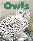 Owls (Kids Can Press Wildlife Series)