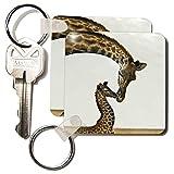 3dRose LLC 8 x 8 x 025 giraffe mama and baby Key Chains set of 2 kc222381