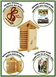 Mason Bee House + Organic Wildflower Seeds + Quick Start Guide - Open and Watch Your Bees - Solitary Native Bee Hive Bundle Set for Spring and Summer Bees - Expertly Designed to Attract More Bees