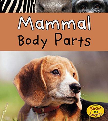 Mammal Body Parts (Animal Body Parts)