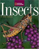 img - for Insects book / textbook / text book
