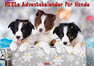 heels adventskalender f r hunde haustier. Black Bedroom Furniture Sets. Home Design Ideas