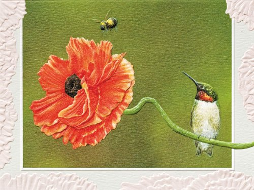 pumpernickel-press-boxed-blank-notecards-bee-line