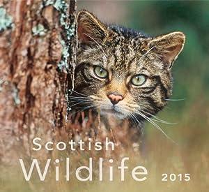 Scottish Wildlife 2015 Calendar