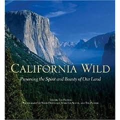 beautiful california scenery photography