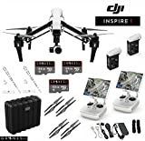 DJI T600 Inspire 1 Quadcopter with