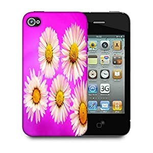 Snoogg Daisies Designer Protective Back Case Cover For Apple Iphone 4