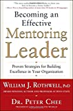 Becoming an Effective Mentoring Leader: Established Strategies for Building quality in Your company