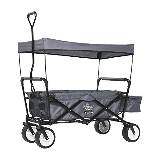 Best Review Of Folding Grey Sport Wagon