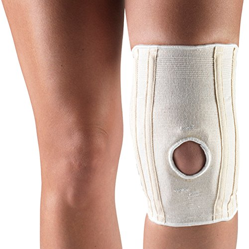 Champion Knee Brace with Hor-shu Support Pad (Large) (Champion C Caps compare prices)