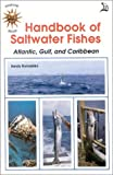 Handbook of Saltwater Fishes (0893170402) by Sandra Romashko