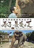 天王寺おばあちゃんゾウ 春子 最後の夏[DVD]