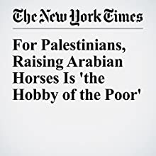 For Palestinians, Raising Arabian Horses Is 'the Hobby of the Poor' Other by James Glanz, Rami Nazzal Narrated by Caroline Miller