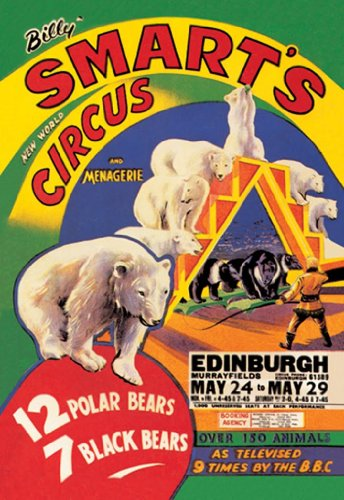 Billy Smart'S New World Circus And Menagerie - 12 Polar Bears- 7 Black Bears - Edinburgh, 12X18 Canvas Giclée, Gallery Wrap front-1002523