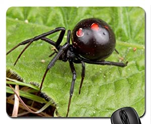 BLACK WIDOW SPIDER 2 Mouse Pad, Mousepad
