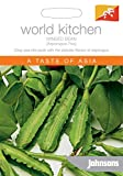 Johnsons World Botanics Vegetable - Pictorial Pack - Winged Bean (Asparagus Pea) - 50 Seeds