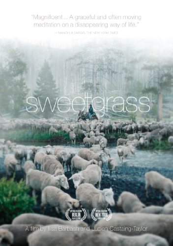 Cover art for  Sweetgrass