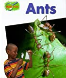 Ants (Minipets) (0739818309) by Greenaway, Theresa