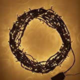 Indoor Christmas Tree Lights, 300 Mini Bulbs Green Cable, Twinkling by Lights4fun