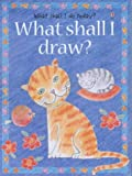 What Shall I Draw (What Shall I Do Today Series) (0746020244) by Gisson, Ray