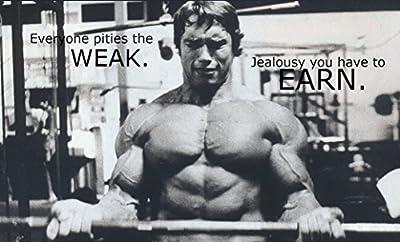 Arnold Schwarzenegger Inspiration Bodybuilding poster 21 inch x 13 inch