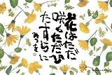 80ピース 相田みつを 花はただ咲く 80-F009