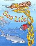 img - for Sea Life Coloring Book book / textbook / text book