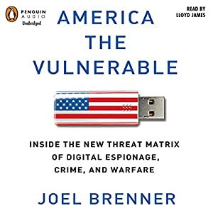 America the Vulnerable Audiobook