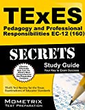 img - for TExES Pedagogy and Professional Responsibilities EC-12 (160) Secrets Study Guide: TExES Test Review for the Texas Examinations of Educator Standards book / textbook / text book