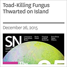 Toad-Killing Fungus Thwarted on Island Other by Susan Milius Narrated by Jamie Renell