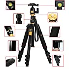 XCSOURCE Professional Portable Magnesium Aluminium Alloy Tripod Monopod & Ball Head SLR Camera Canon Nikon Pentax Sony Tripod Q-555 Max Height: 55.9, Max Load: 8KG LF393