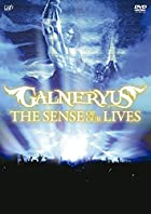 THE SENSE OF OUR LIVES [DVD](�߸ˤ��ꡣ)