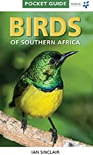 Pocket Guide Birds of Southern Africa The Pocket Guide