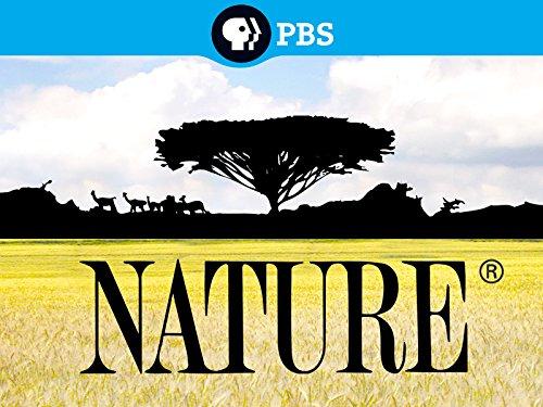 Nature Season 4