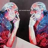 Songtexte von Not Blood Paint - La Normalidad