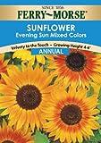 Ferry-Morse 1501 Sunflower Annual Flower Seeds, Evening Sun (1.5 Gram Packet)