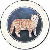 Britisch Kurzhaar Ginger Cat AutovignetteGenehmigungsinhaber Geschenk
