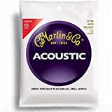 Martin M190 80/20 Bronze 12-String Acoustic Guitar Strings, Light (Tamaño: 12 String Light | M190)
